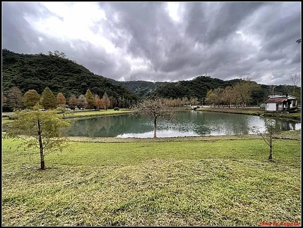 蜊埤湖畔落羽松066.jpg
