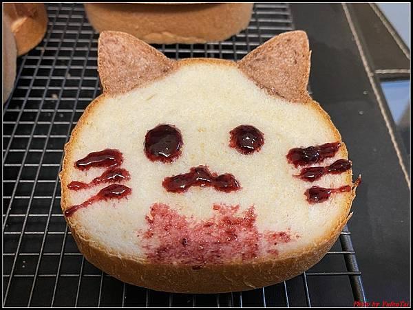 貓咪吐司10.jpg