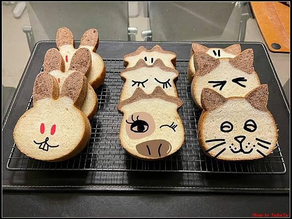 貓咪吐司12.jpg
