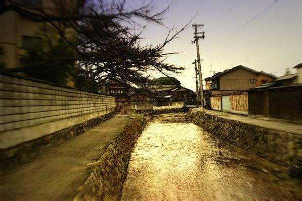 京都美術館前白川
