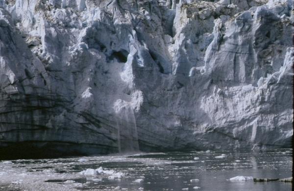 「冰河灣國家公園」(Glacier Bay)