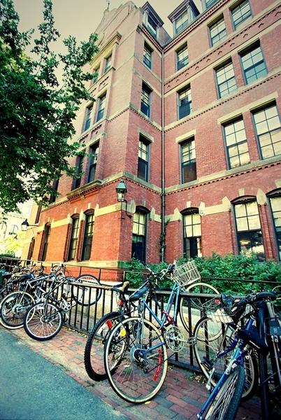哈佛大學裡的腳踏車架