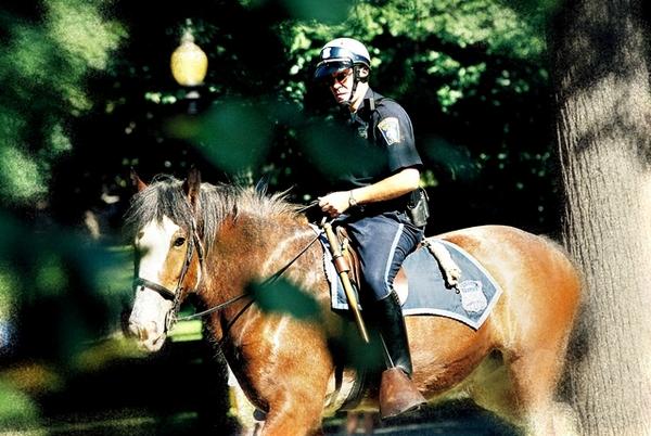 波士頓騎警