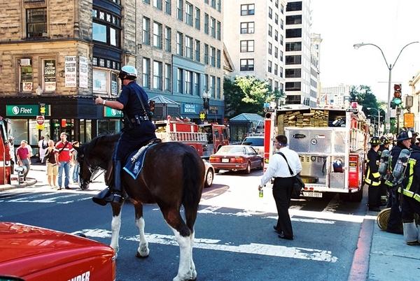 波士頓警騎執勤中