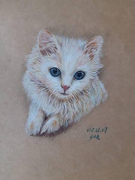 動物_180109_0016.jpg