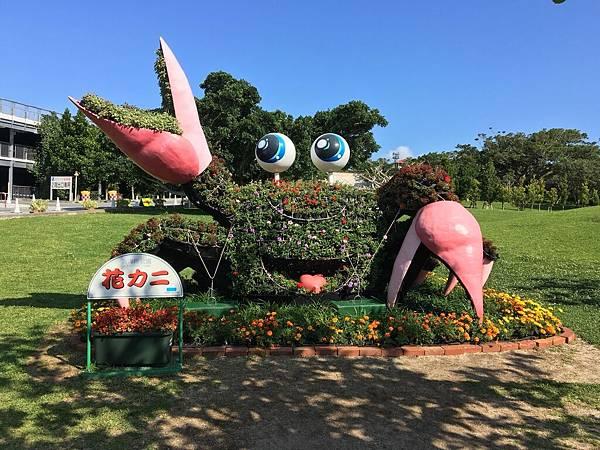 沖繩day2 象鼻石,古宇利島,水族館_180601_0204.jpg