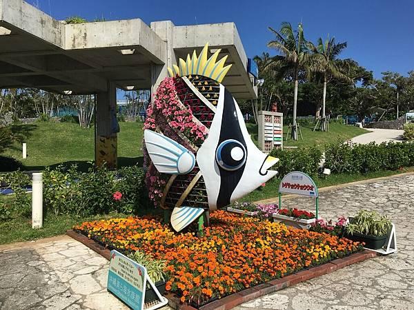 沖繩day2 象鼻石,古宇利島,水族館_180601_0205.jpg
