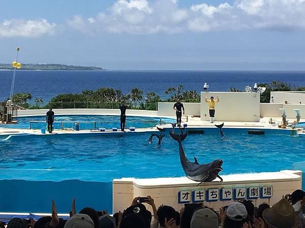 沖繩day2 象鼻石,古宇利島,水族館_180601_0270.jpg