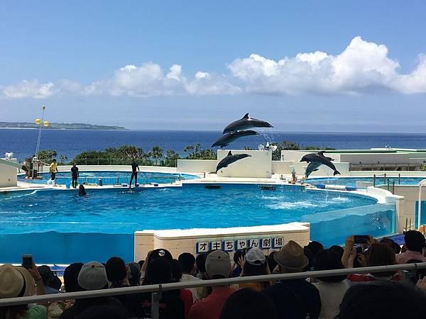 沖繩day2 象鼻石,古宇利島,水族館_180601_0275.jpg