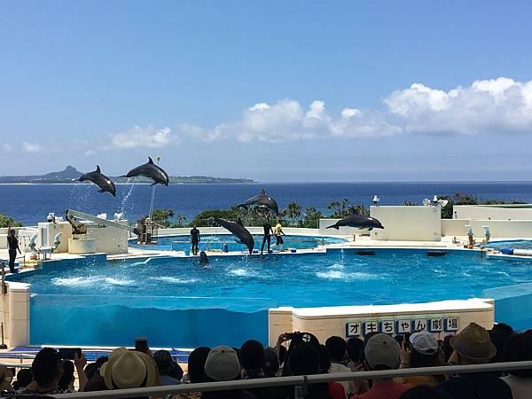 沖繩day2 象鼻石,古宇利島,水族館_180601_0273.jpg