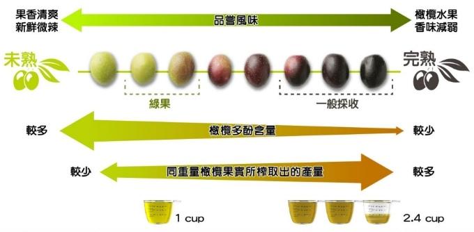 橄欖油_40.jpg