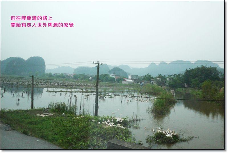 陸龍灣02-1.JPG