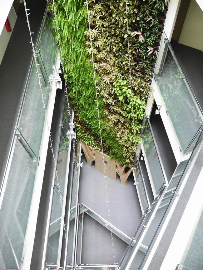 │宿。台中│綠生活的美好「葉綠宿Green Hotel」距逢甲夜市5分鐘腳程
