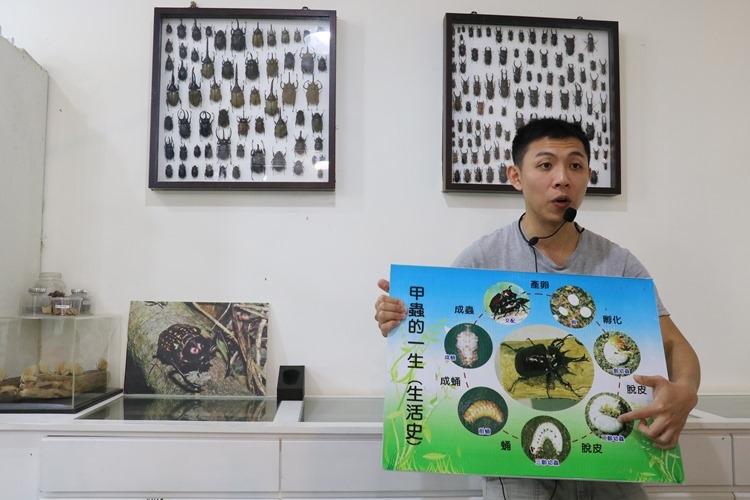 ▌宜蘭親子景點▌自然生態秘境。甲蟲森林生態教室(雨天備案)