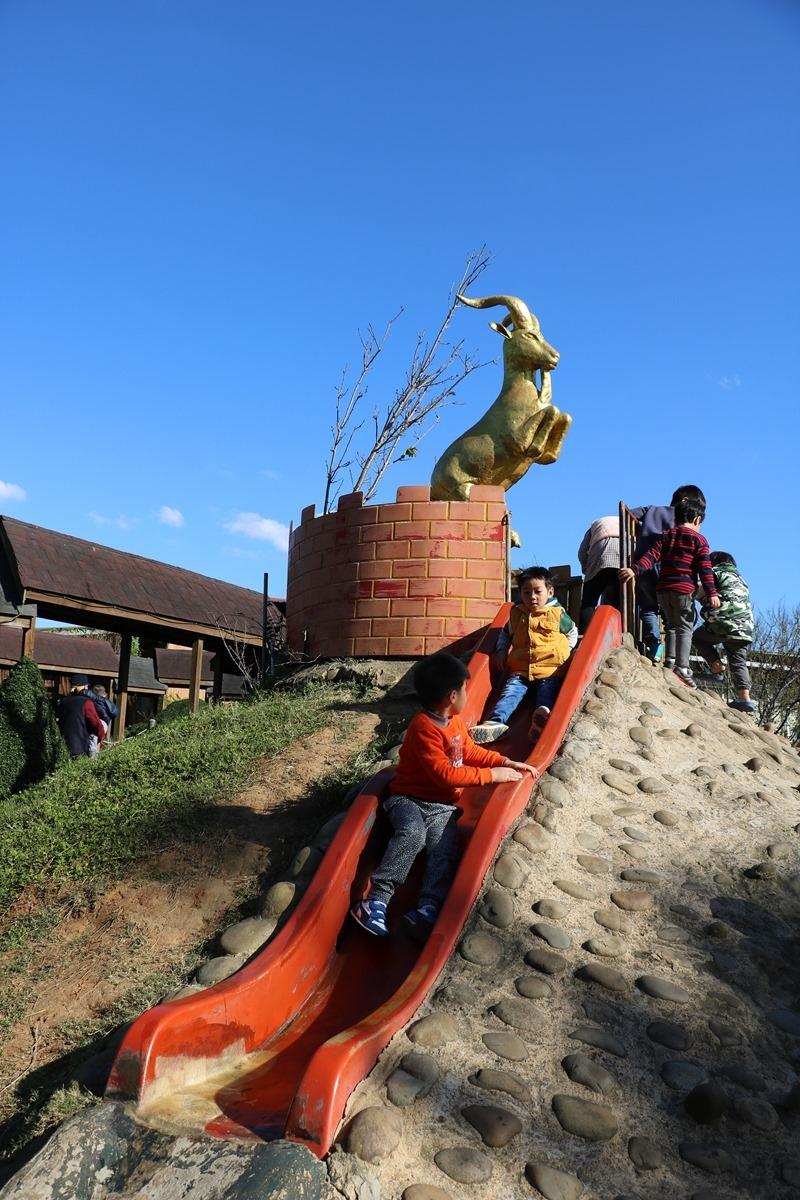 ▌桃園景點▌帶小孩餵羊咩咩、草泥馬,還有森林小火車叭叭叭。羊世界教學休閒牧場/勇伯臺灣羊餐廳