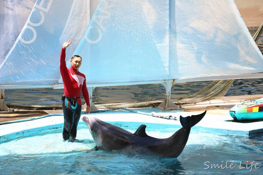 ▌花蓮景點▌暑假親子必訪「遠雄海洋公園」奇幻冒險 海盜水花派對