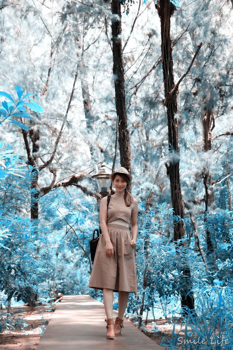 ▌台南景點▌IG打卡秘境。穿越林間步道 遇見漁光島寧靜月牙灣