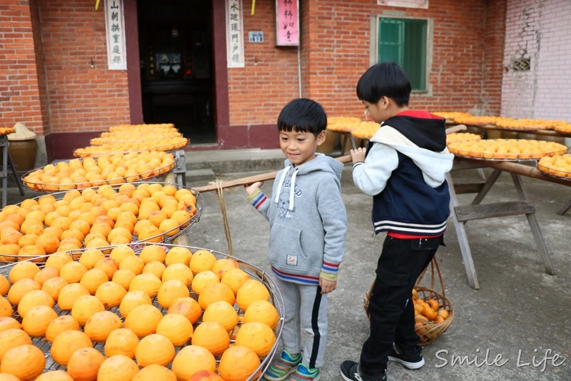 ▌新竹親子景點▌味衛佳柿餅觀光農場。味覺與視覺都享受的秋季限定之旅