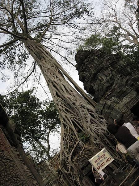 塔普倫神廟26.JPG