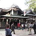 matuyama-sakura 061.jpg