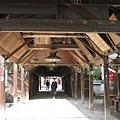 matuyama-sakura 050.jpg