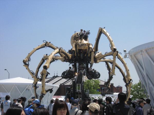 橫濱大蜘蛛