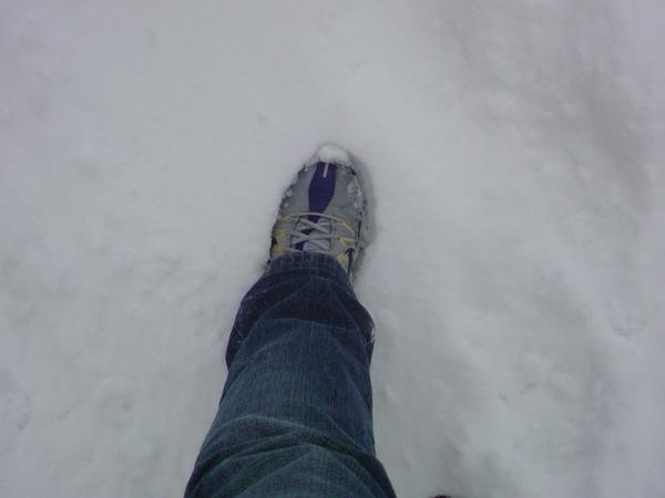 雪地裡的腳