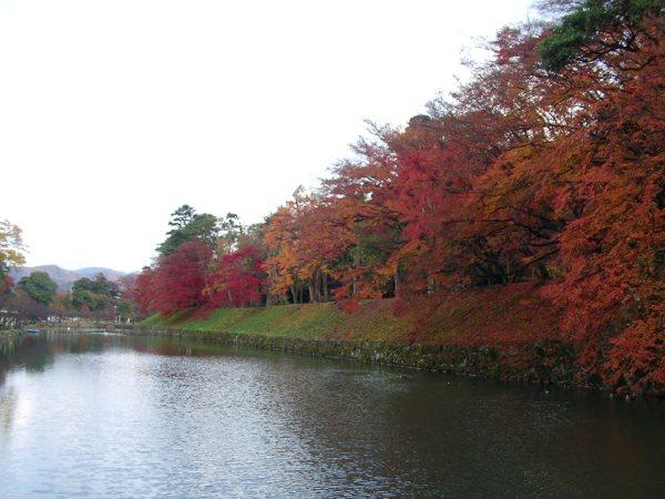 彥根城護城河