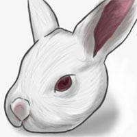 兔大福拷貝.jpg