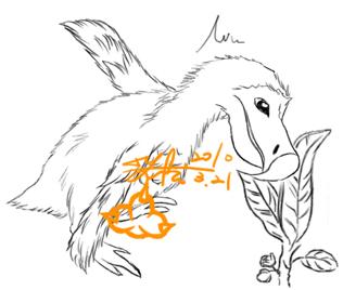 多多鳥拷貝00.jpg