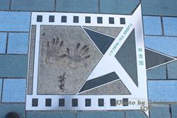 2011090310 2011香港二度血拼自由行(6)星光大道不認識的明星真多