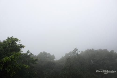 2011041319 2011香港探親血拼自由行(15)消失的世界三大百萬夜景