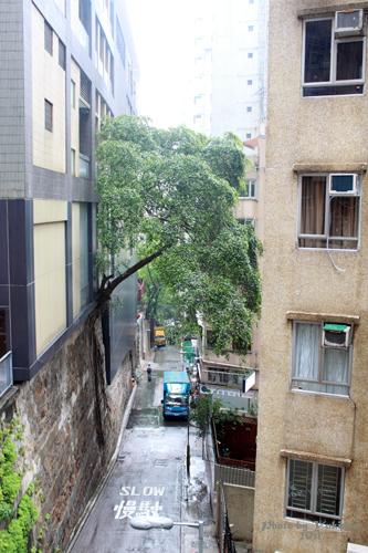 2011040211 2011香港探親血拼自由行(10)重慶森林@中環半山自動扶梯
