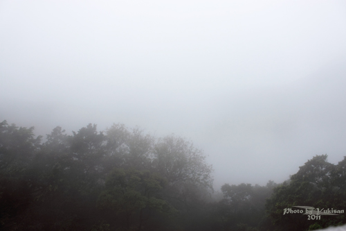 2011041322 2011香港探親血拼自由行(15)消失的世界三大百萬夜景