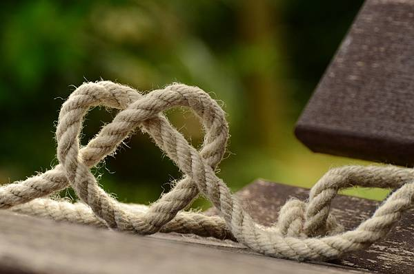 branch-rope-love-heart-friendship-together-602101-pxhere.com.jpg