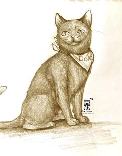 130205-CAT-LOKI