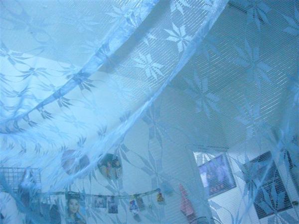 蚊帳裡的視野