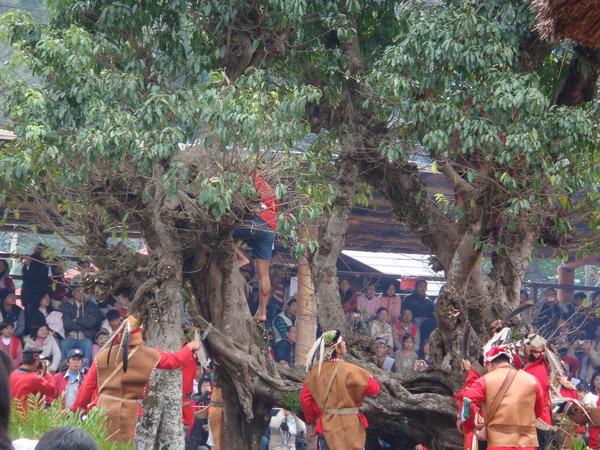 2008/2/8達邦豐年祭