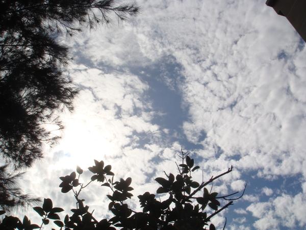 戀空---今天天氣不錯!
