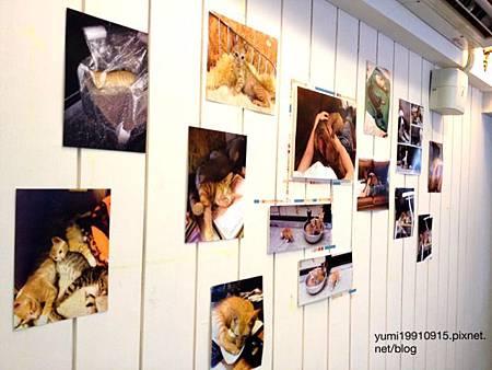 Deer Cafe 030