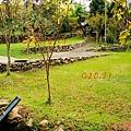 黃金森林24.jpg