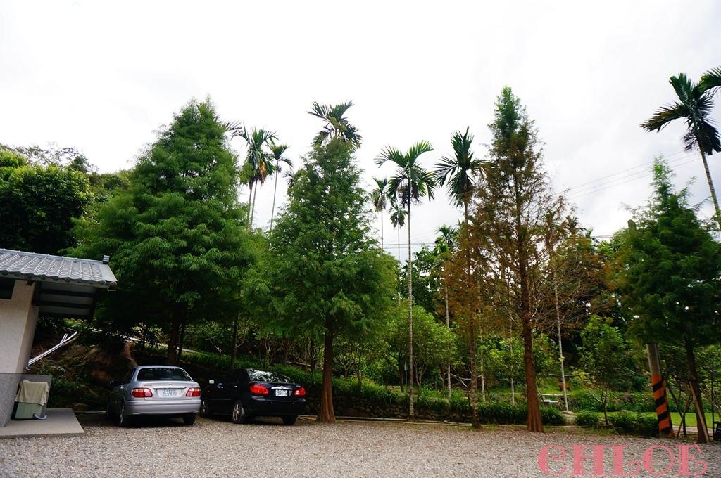 黃金森林29.jpg