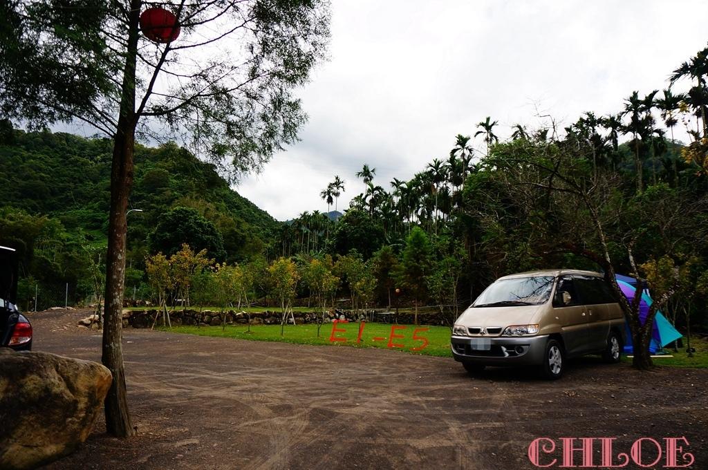 黃金森林43.jpg