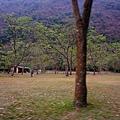 天時農莊-梅香區55.jpg