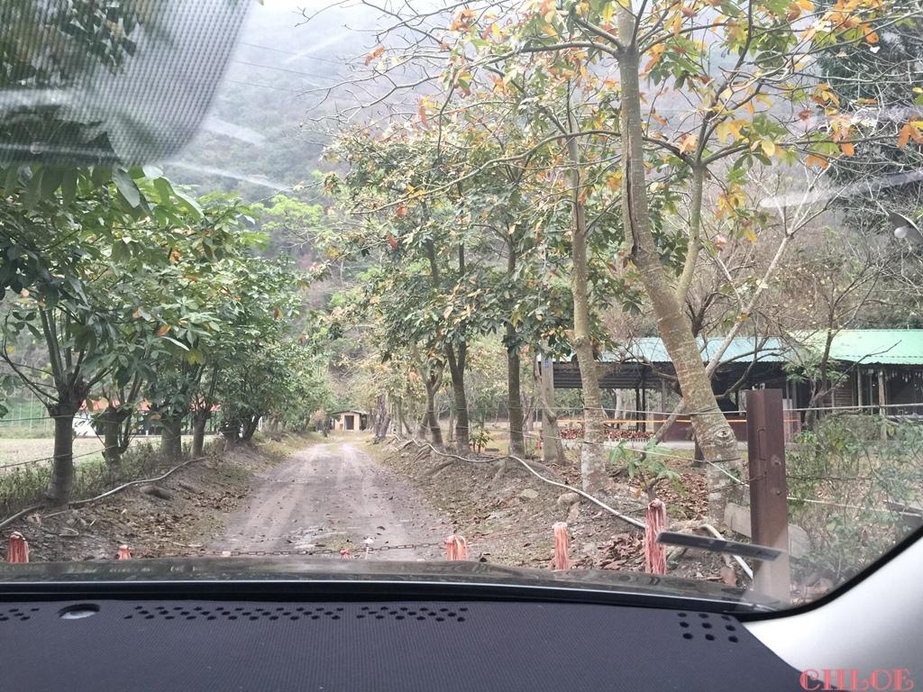 天時農莊-梅香區60.jpg