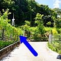 滿天馨露營區029.jpg