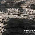 大安溪大峽谷 (20).jpg