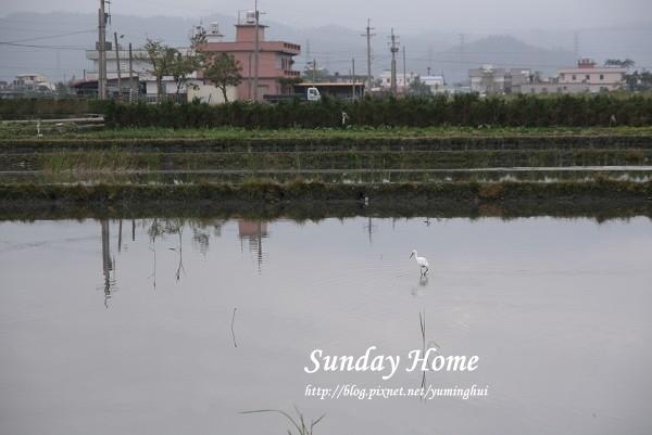 Sunday Home 民宿 (37).jpg