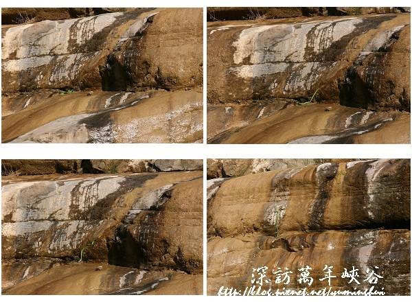 萬年峽谷 (47).jpg