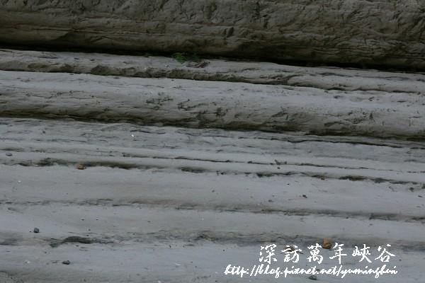 萬年峽谷 (11).jpg